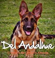 Del Andalhue